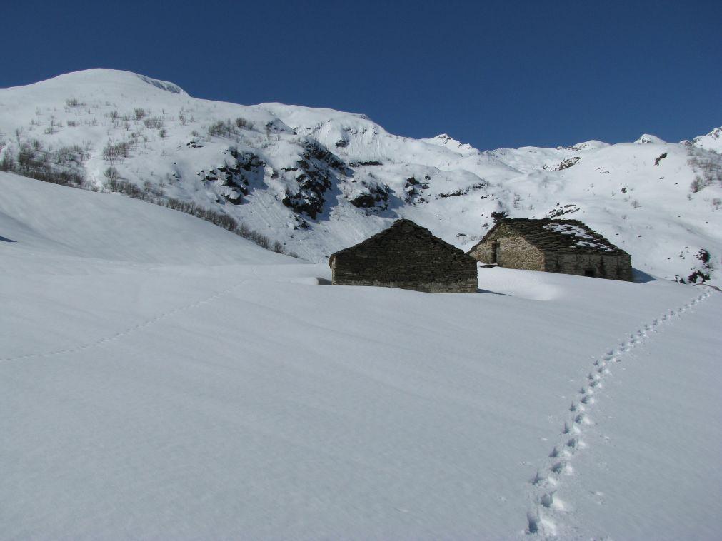 Le Alpi Giasvere