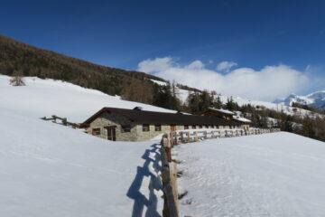 Bell'alpeggio   I   Un beau alpage   I   A nice alpine pasture   I   Schöne Alpe   I   Bonito establo