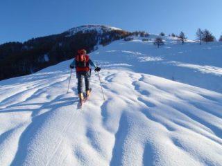 nei pressi dell'alpe ortighera 1500