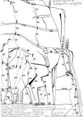 disegno vie del nid des hirondelles