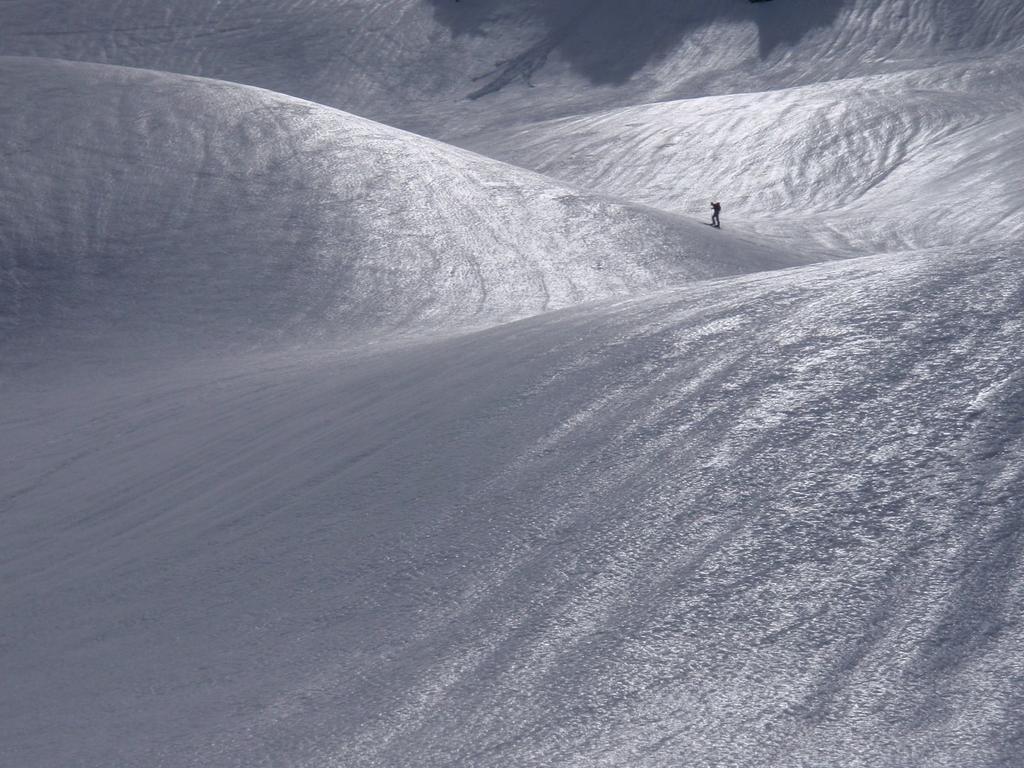 Riflessi sulla neve