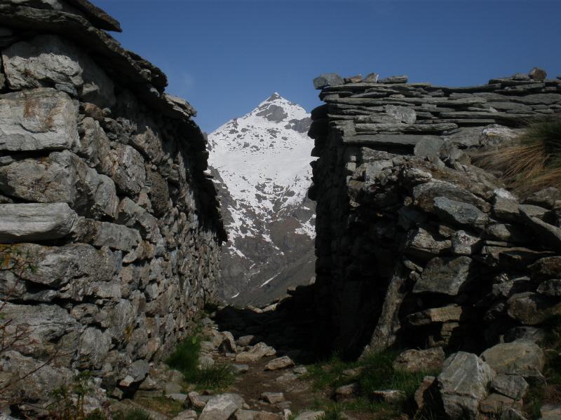 monte colombo dall'alpe belvedere