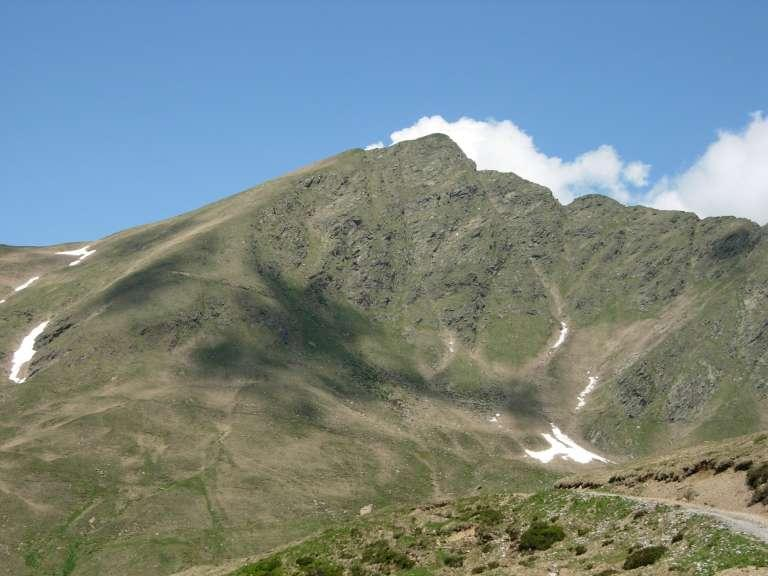 Il Pizzo di Gino dall'Alpe Vaccera