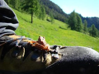 escursionista indigeno