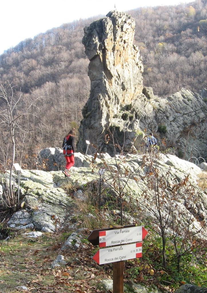 Corvi (Rocca dei) 2009-06-14