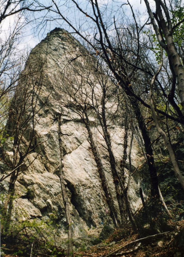 Dusoeu (Roci) - Roccia del Gufo da Balma 2009-06-23