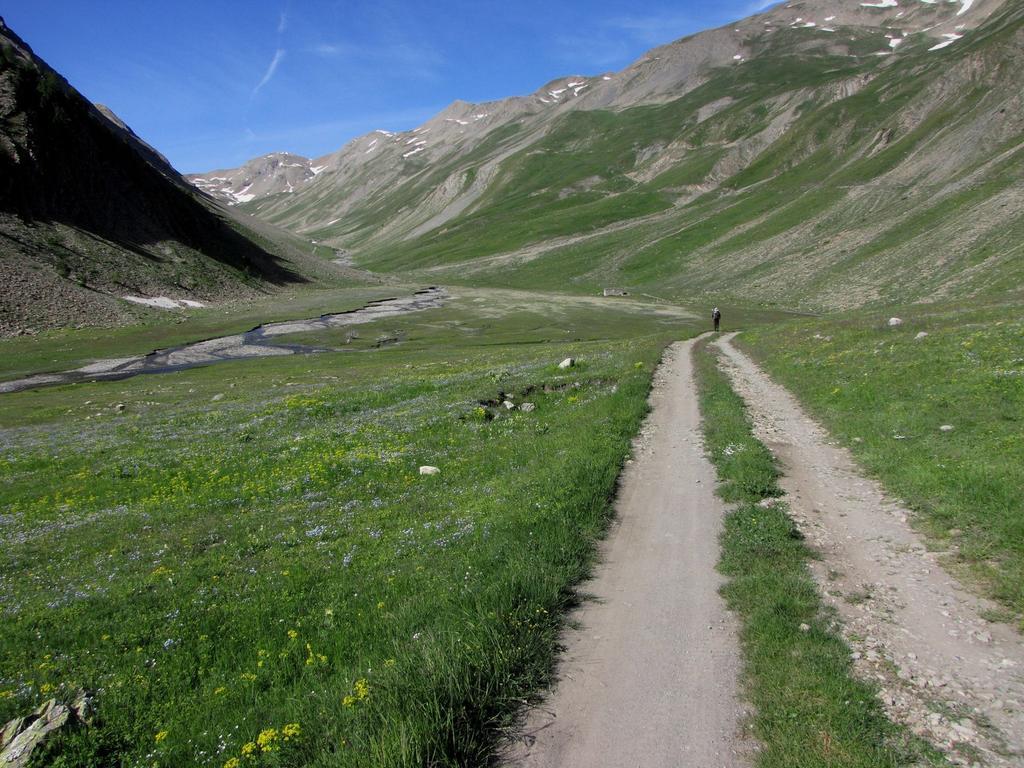 la parte iniziale del Vallon Ruisseau de Parpaillon (24-6-2009)