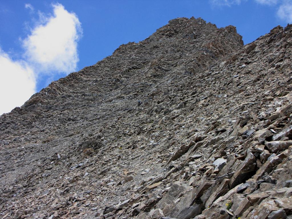 la cresta SO del Grand Berard vista dal Pas de Reverdillon (24-6-2009)