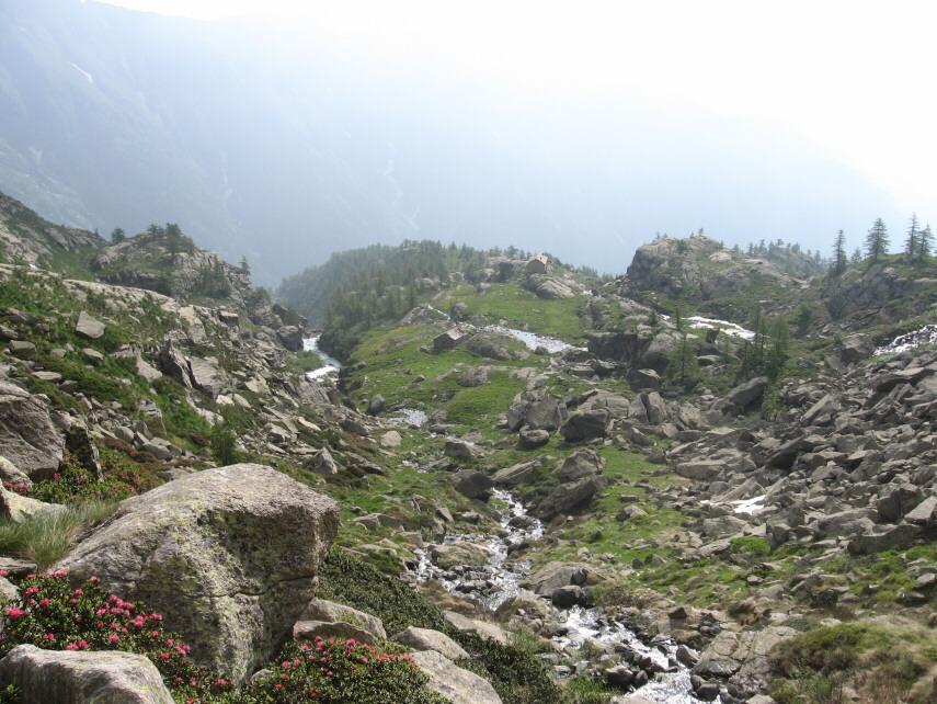 Alpe Vassinetto e Casa di caccia Vittoria dall'alto
