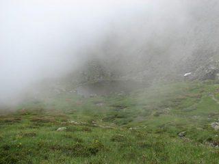 laghetto nella nebbia