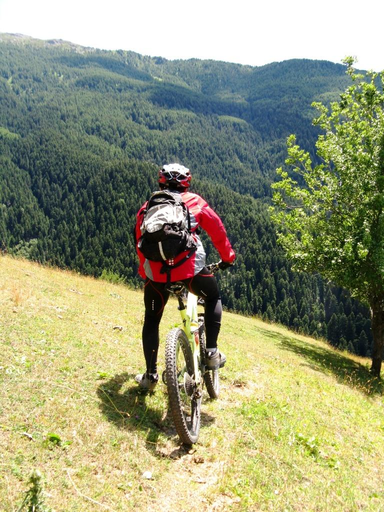 ...vista verso Ovest sempre in Parco Gran Bosco di Salbertrand...