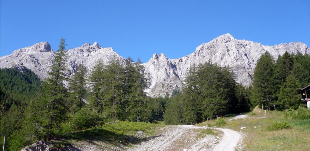 La cresta vista dal Rif. Guido Rey