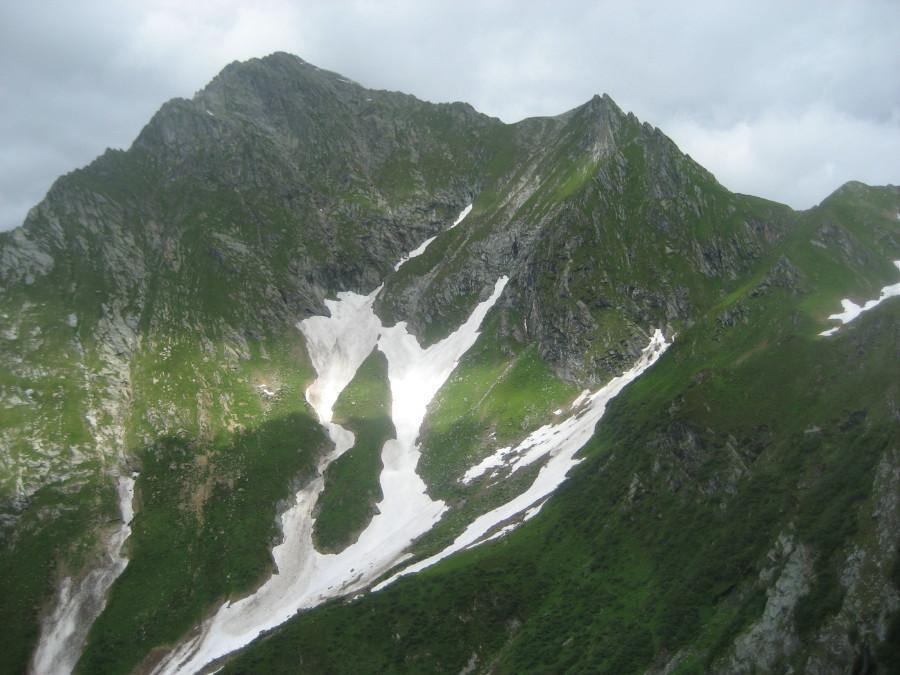 Il Tagliaferro fotografato sul sentiero/traccia che porta all'alpe Sattal