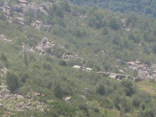 Alpe Ronchi