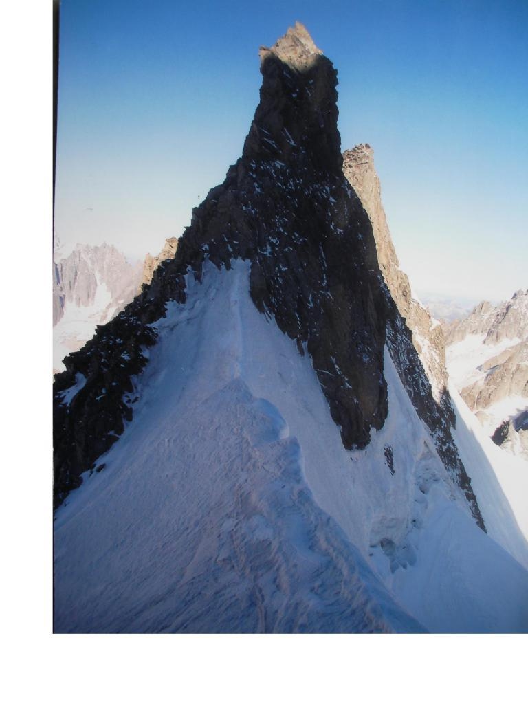 Le aguzze Petit Aig. de Triolet dal Col superior du Triolet