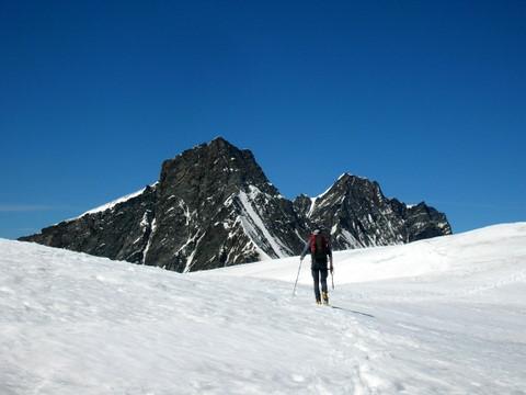 Il Taschhorn ed il Dom dalla cima dell'Alphubel