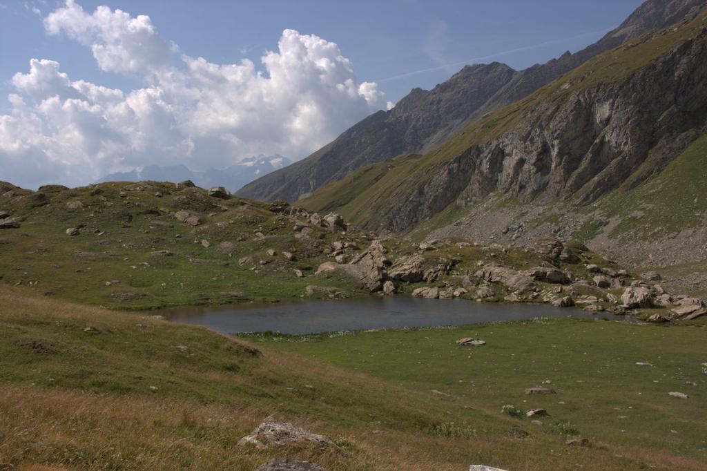 un piccolo laghetto nella conca erbosa di quota 2400 m. (22-8-2009)