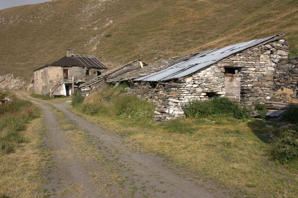 l'Alpeggio Rantin, lungo la via di salita (22-8-2009)