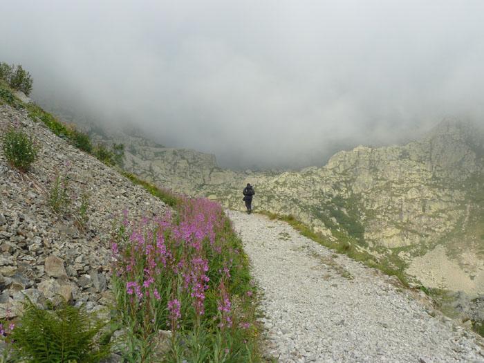 un tratto di sentiero in salita
