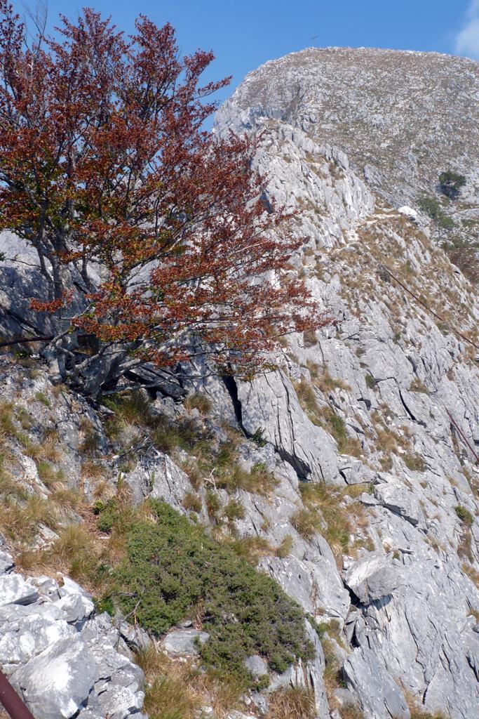 Ultima parte della cresta sud-est