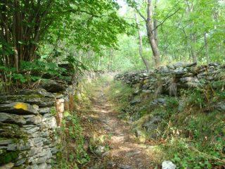 Sentiero per Capanna ussolo