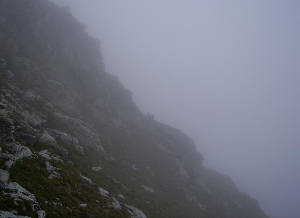 nuovamente nebbia in discesa