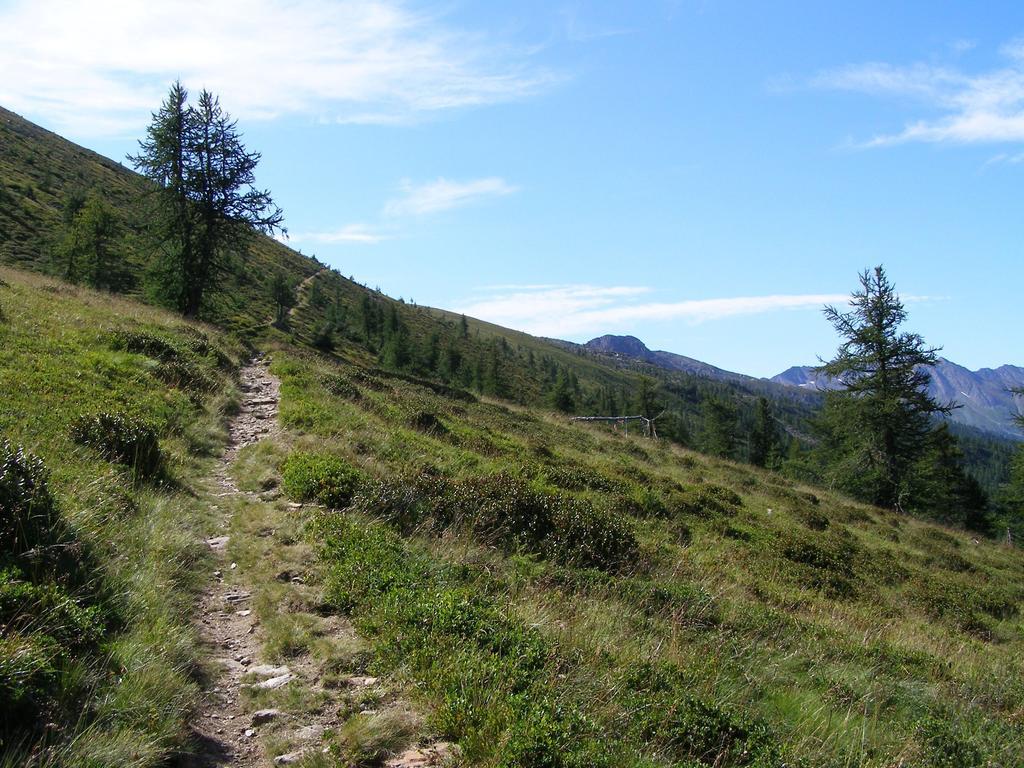 Sentiero a piedi in salita, ma ciclabile in discesa
