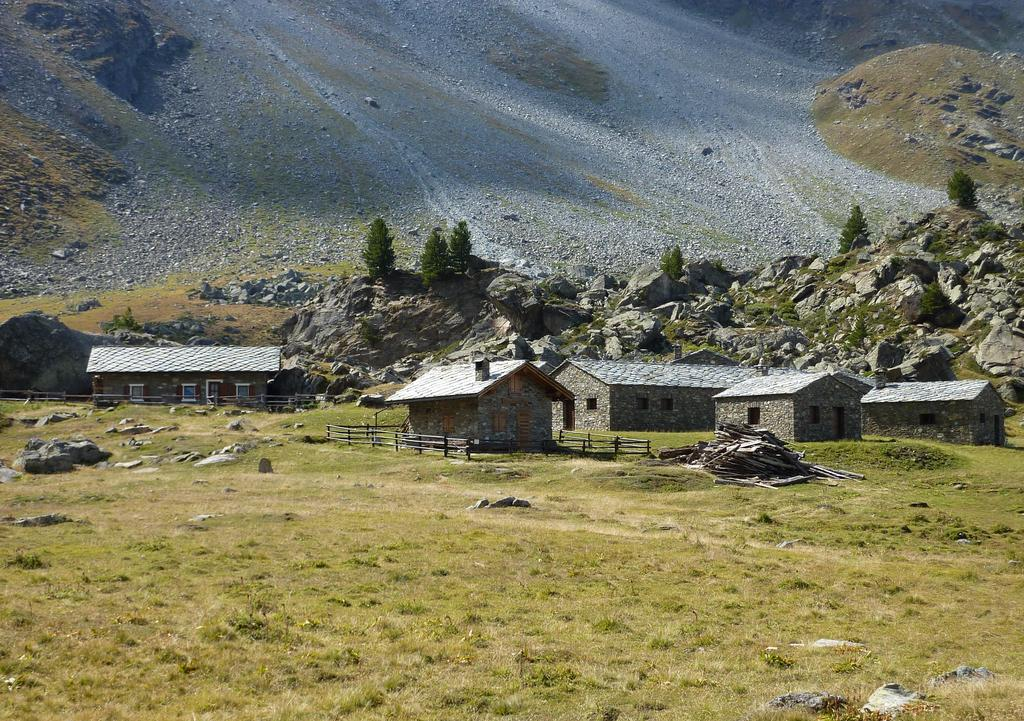 Alpe Gran Nomenon