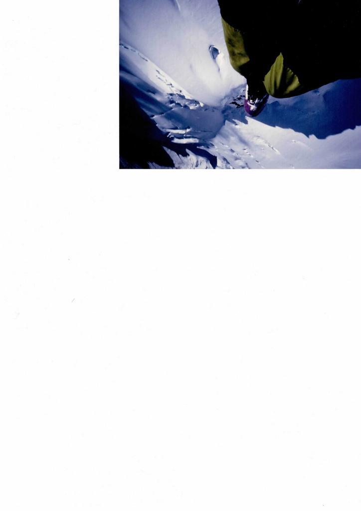 Bianco (Monte) dal Refuge des Cosmiques 2009-09-28
