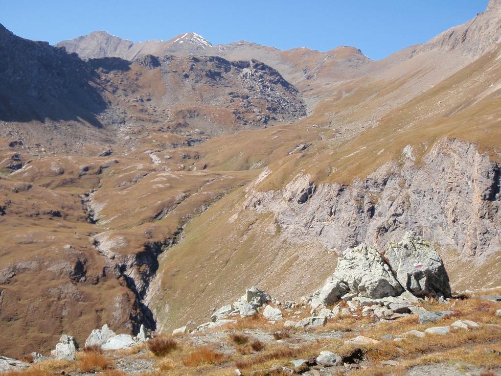 il bel vallone con cima Beccher  Rosa dei Banchi