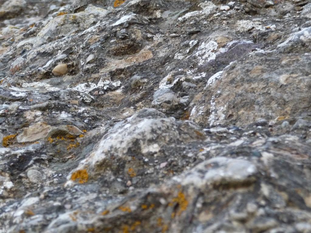 particolare della roccia