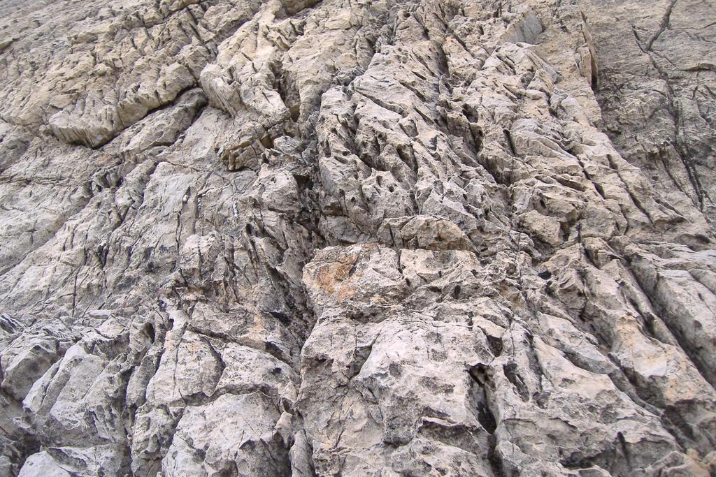 particolare roccia
