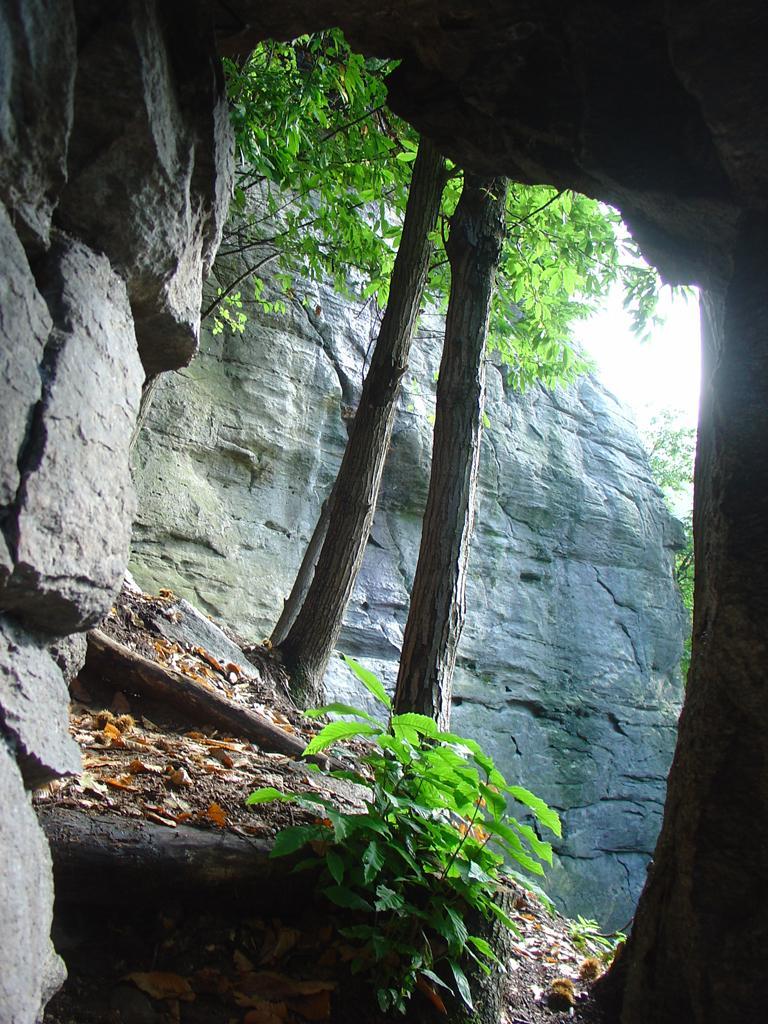arcata rocciosa