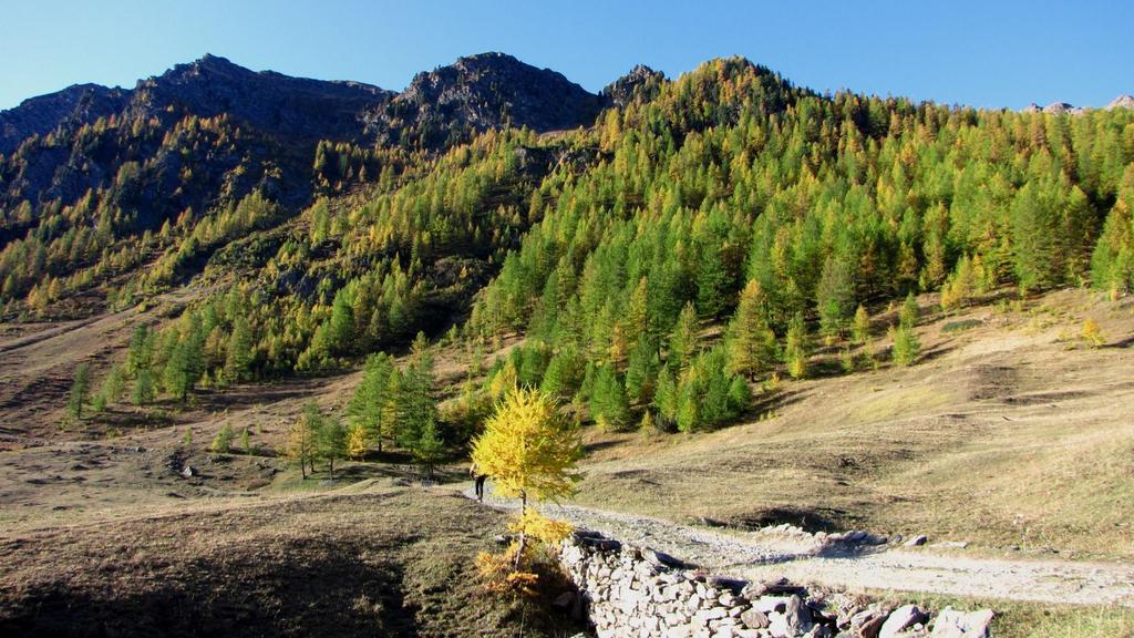 i colori autunnali nel Vallone di Thures (11-10-2009)