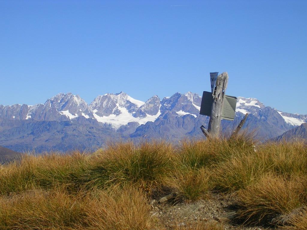 Il gruppo del Bernina visto dalla cima del pizzo Pidocchio