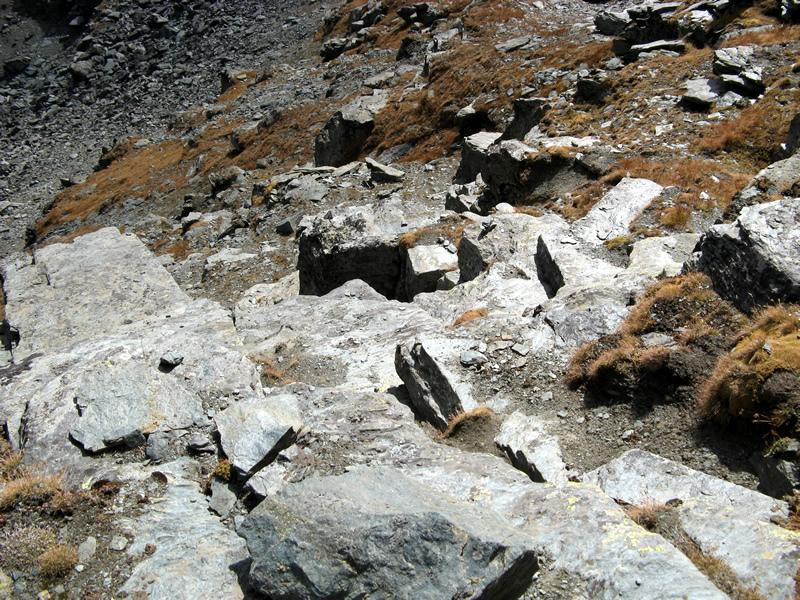 Appena sopra la fascia rocciosa