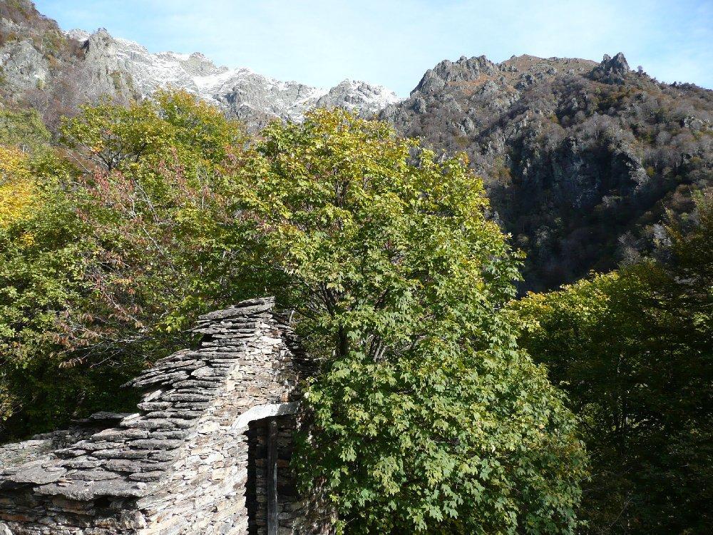 Alpe Baldesaut di sopra