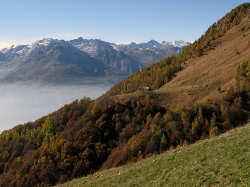 Alpe Boses