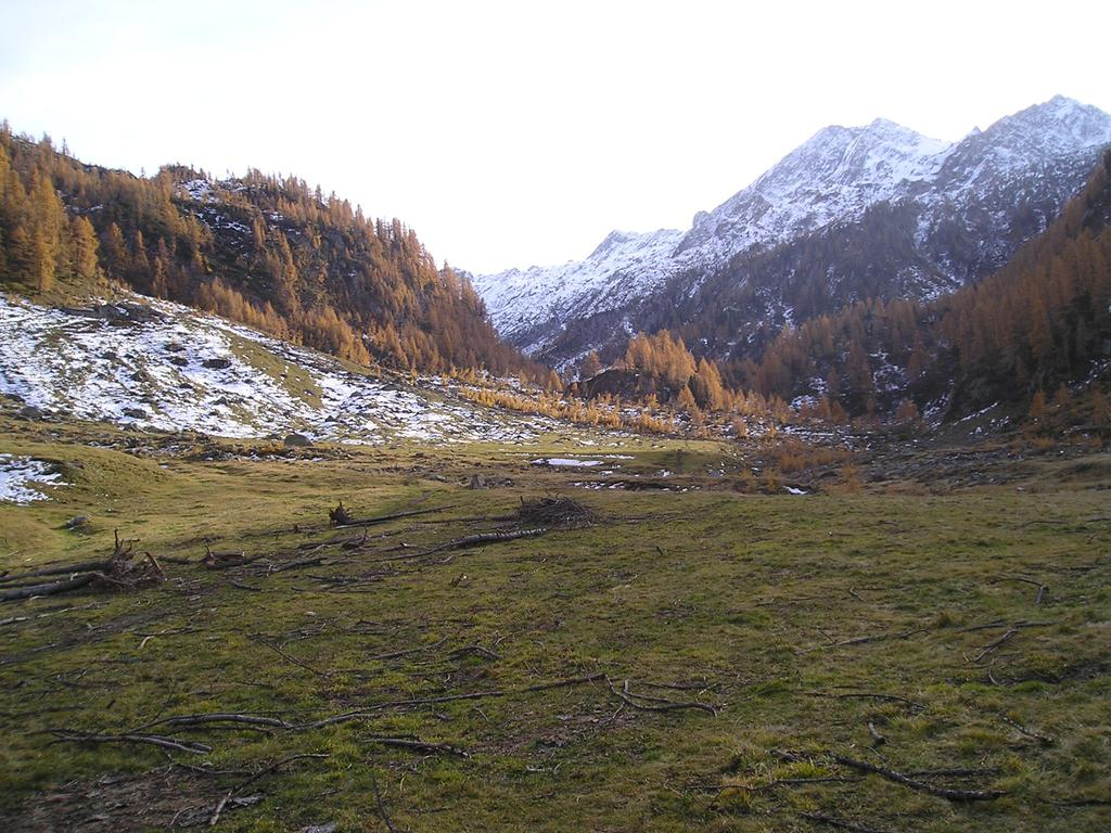 Il pianoro nei pressi dell'alpeggio di Case Vecchie