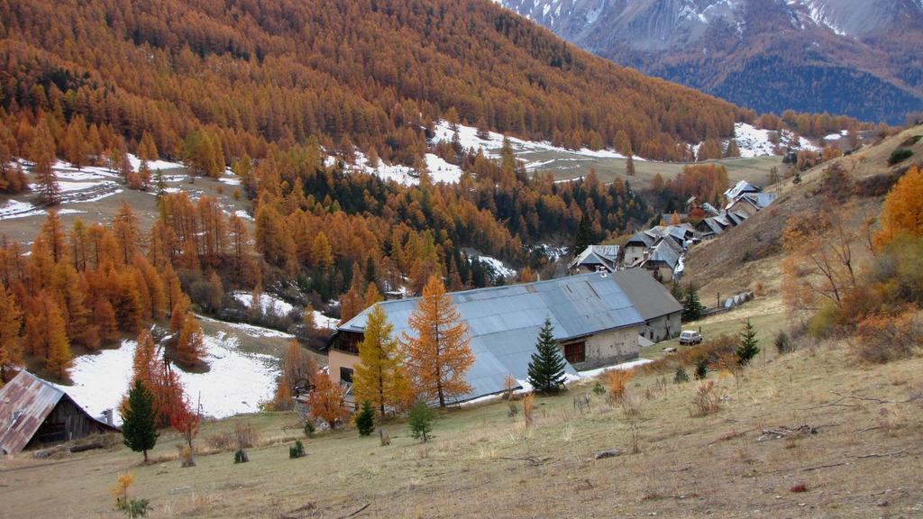 un'altra visuale su Fouillouse con i colori autunnali (31-10-2009)