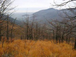 Val Casternone
