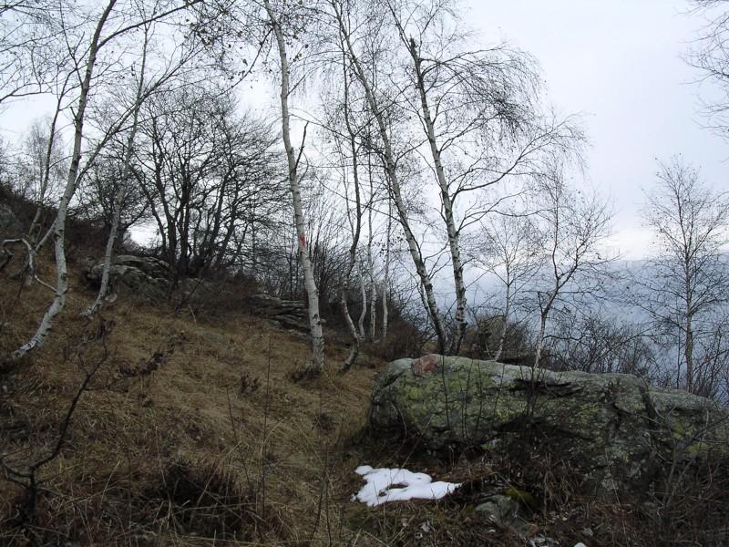 Partenza del sentiero V12 dal colle Portia