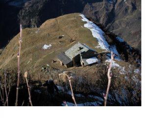 L'Alpe Sattal sullo spallone ovest del Carnera