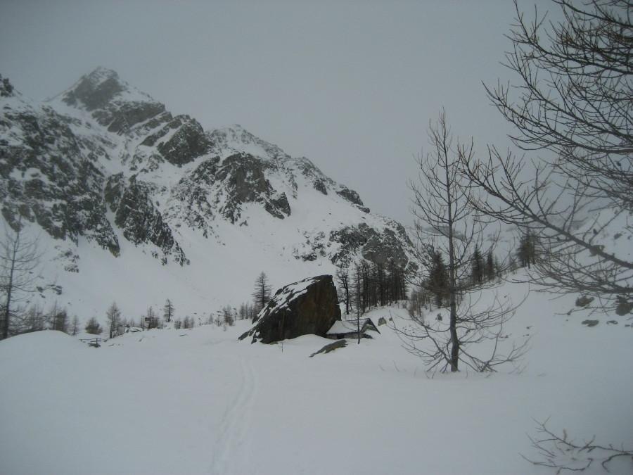 ingresso nella Valdeserta, alpe Valdeserta