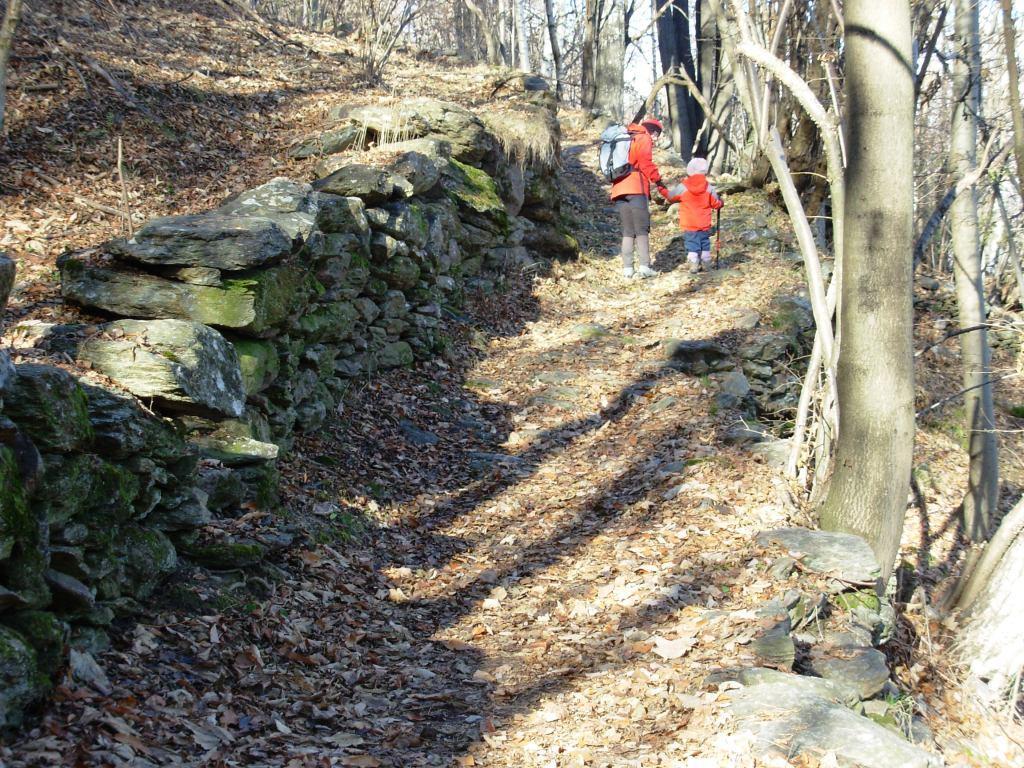 sentiero tra vecchie costruzioni ormai invase dal bosco