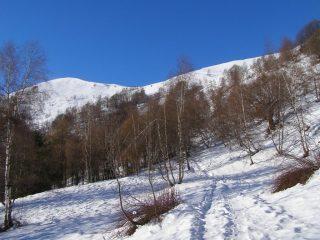 In marcia verso l'Alpe