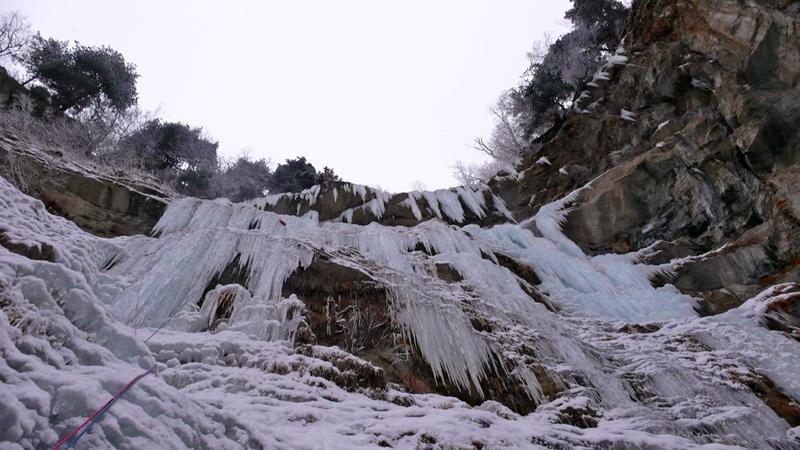 Colosseum 2010-01-08