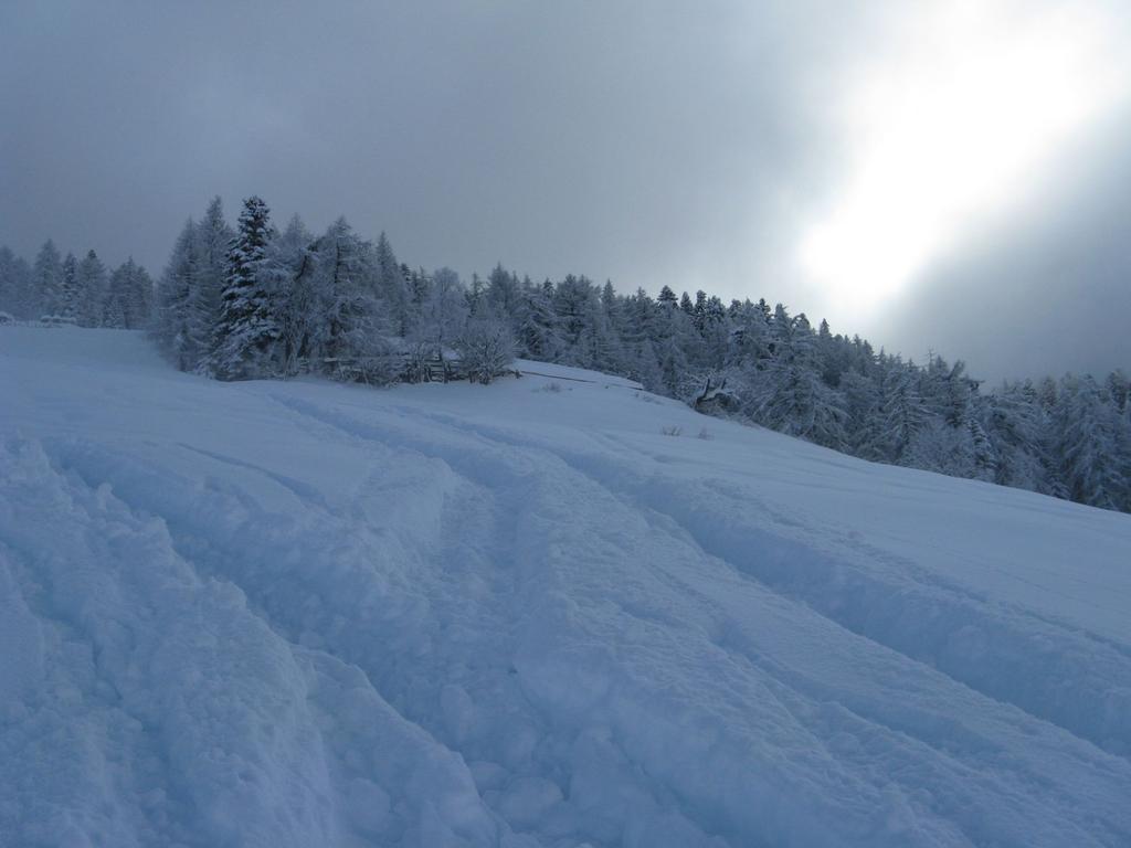 tanta neve!