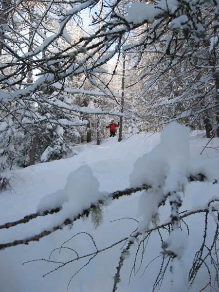 ambiente invernale