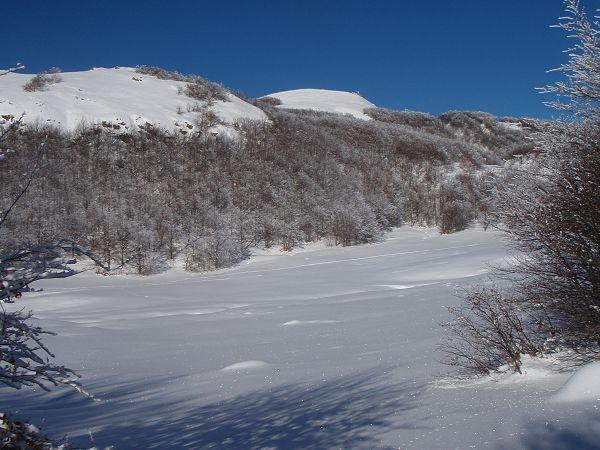 Bue (Monte) daPasso Zovallo 2010-01-16